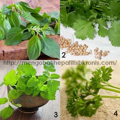 4 Jenis Tanaman Herbal Pengusir Racun dari dalam Tubuh