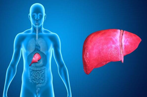 penyakit hepatomegali